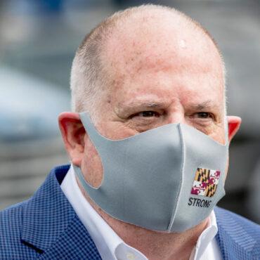 Larry Hogan mask